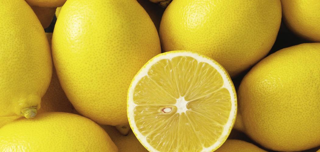 header_lemon