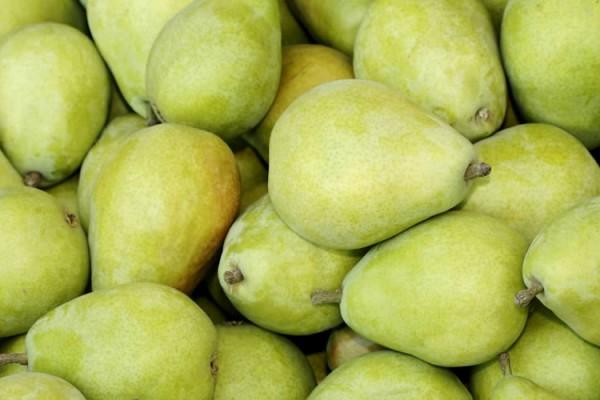 header_pear